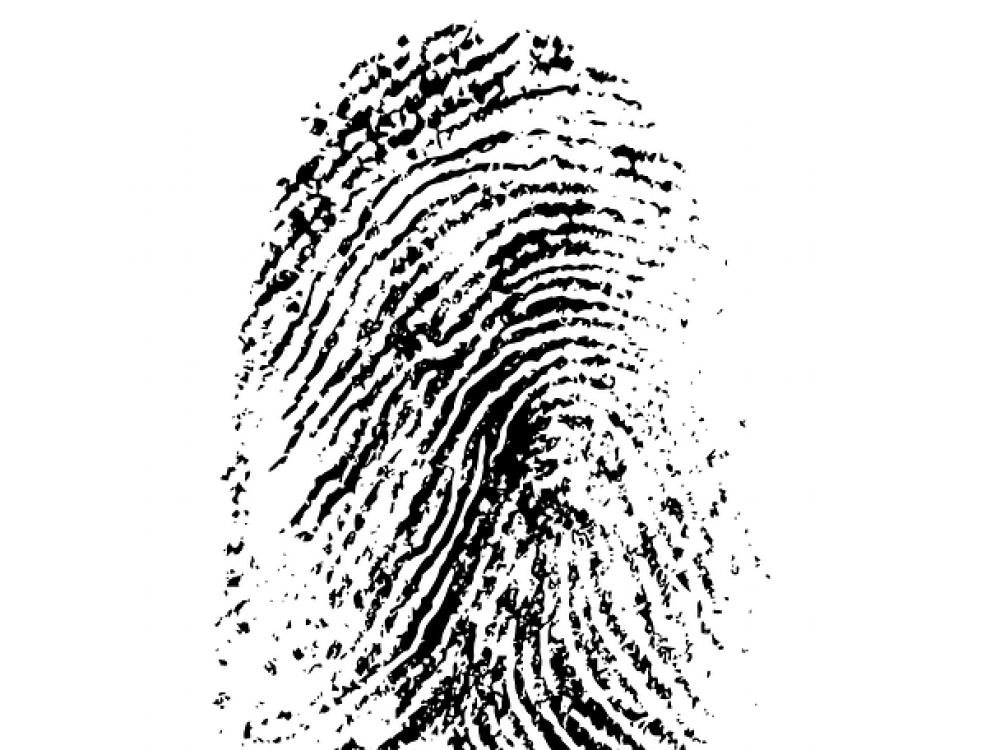 fingerprint-257037REVISED_640 (1)